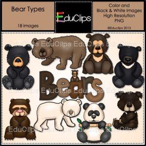 Bear Types