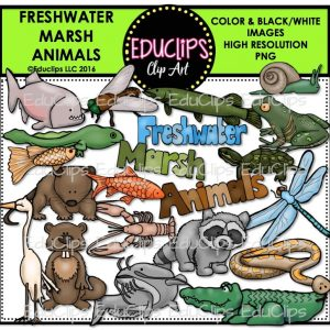 Freshwater Marsh Animals