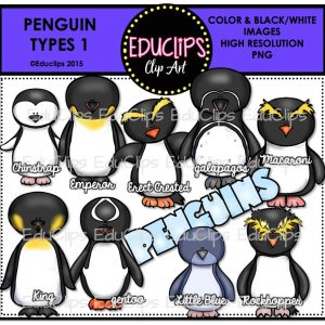 Penguin Types 1
