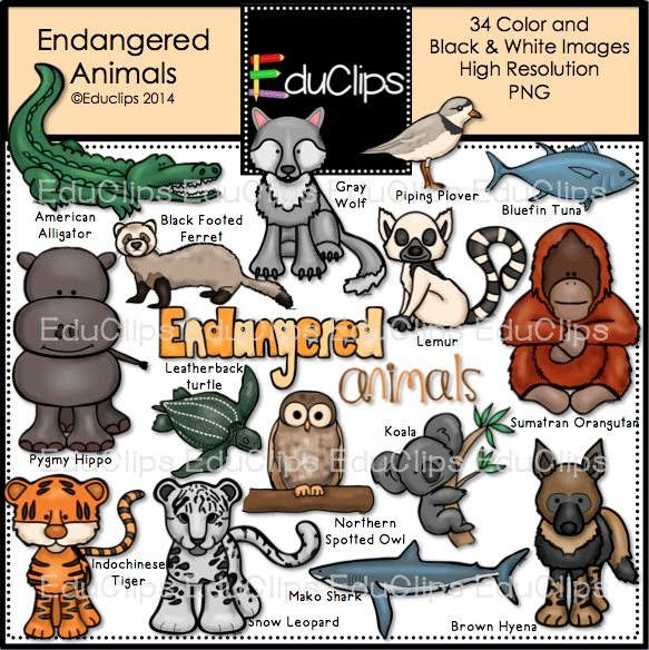 Home / Products / Endangered Animals Clip Art Bundle (Color and B&W)