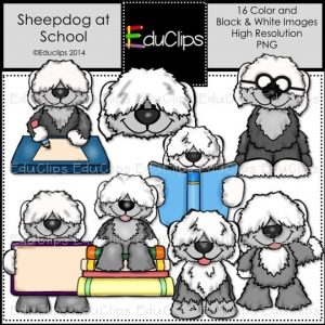 Sheepdog At School