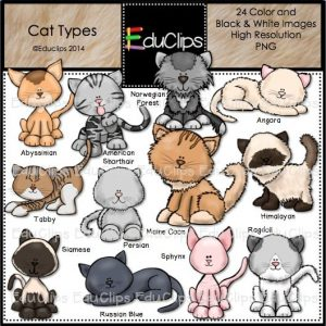 Cat Types