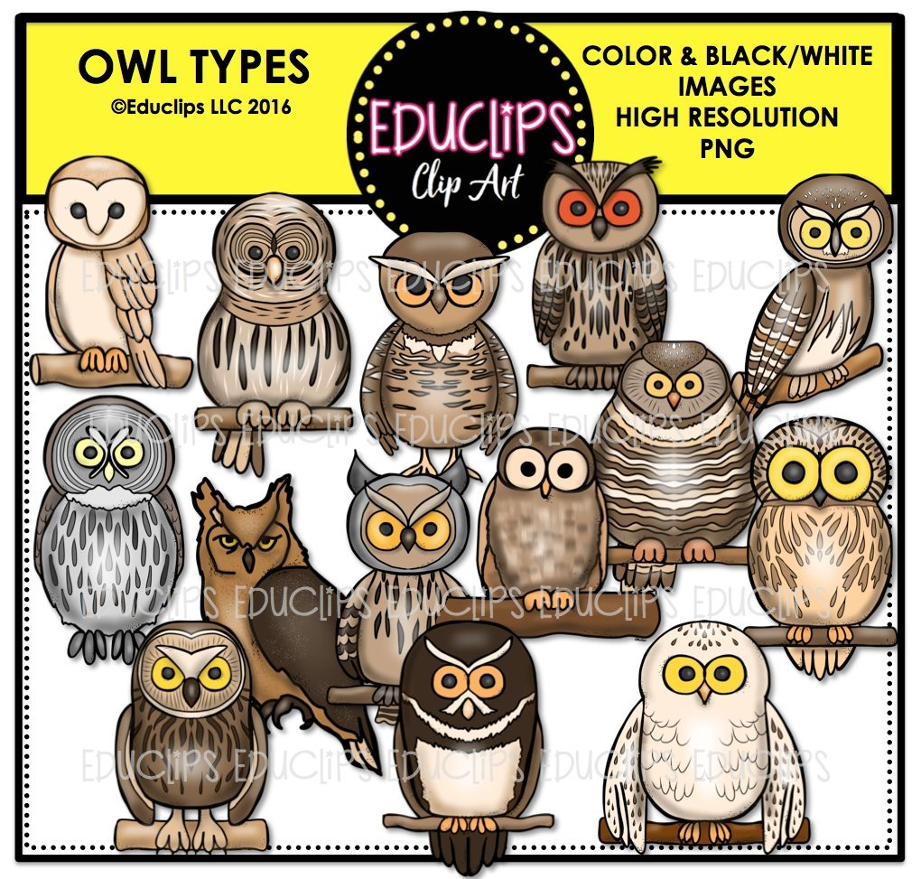 Owl Types Clip Art Bundle (Color and B&W)   Welcome to Educlips Store