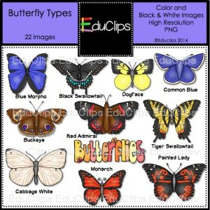 Butterfly Types copy