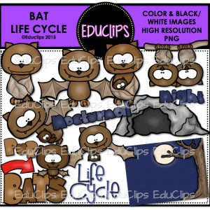 Bat Life Cycle