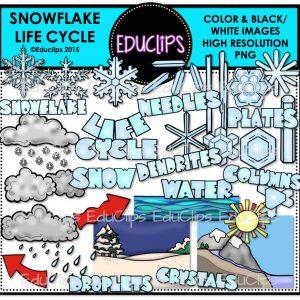 Snowflake Life Cycle