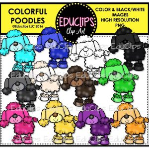 Colorful Poodles