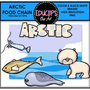 arctic-food-chain