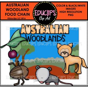 australian-woodland-food-chain