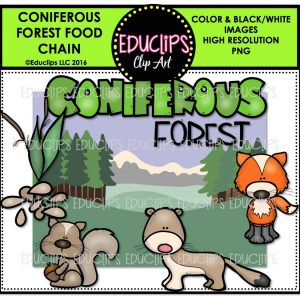 coniferous-forest-food-chain