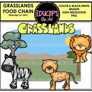 grasslands-food-chain