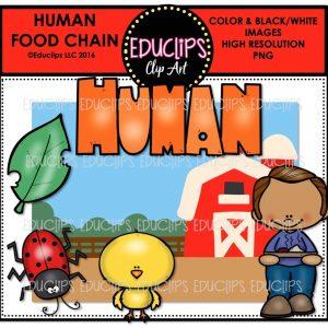 human-food-chain