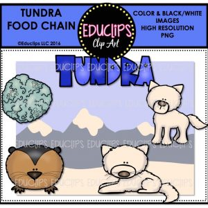 tundra-food-chain
