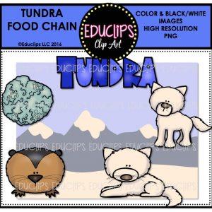 tundra-food-chain