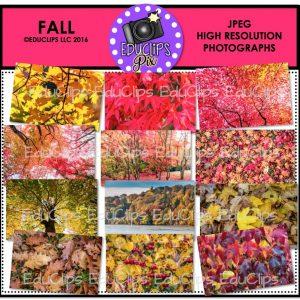 fall-photos