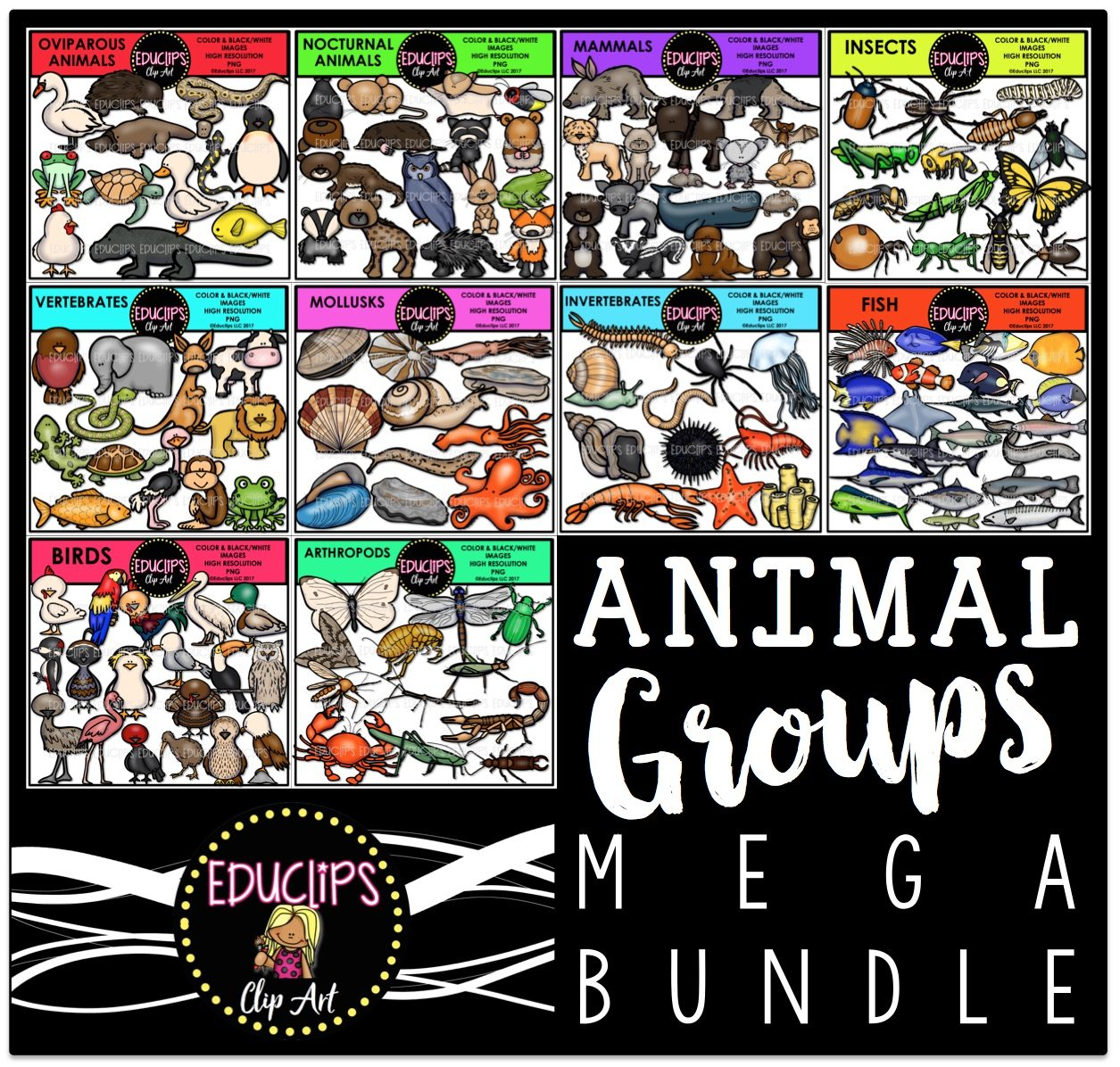 Color and art - Animal Groups Clip Art Mega Bundle Color And