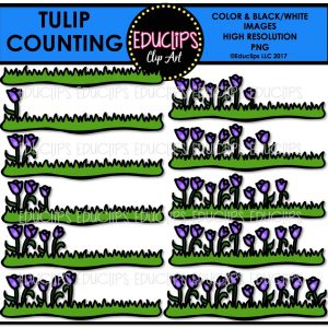 Tulip Counting