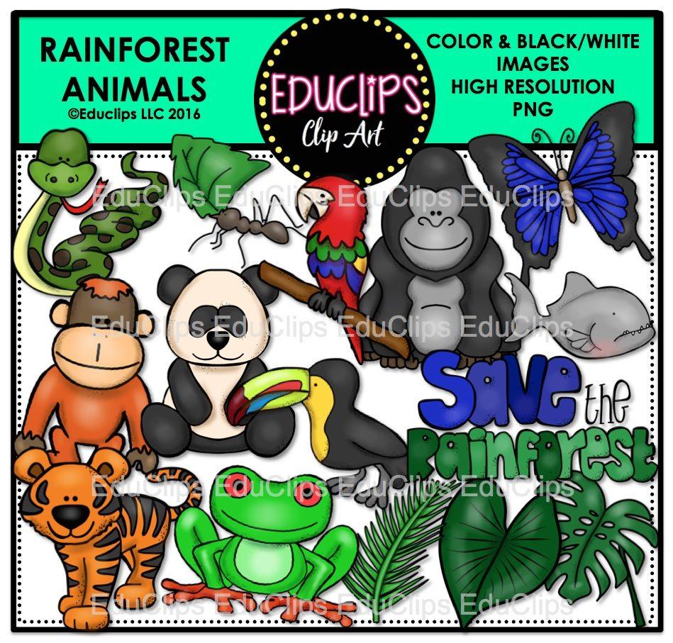 rainforest animals clip art bundle  color and b w rainforest animal clipart printable tropical rainforest animals clipart