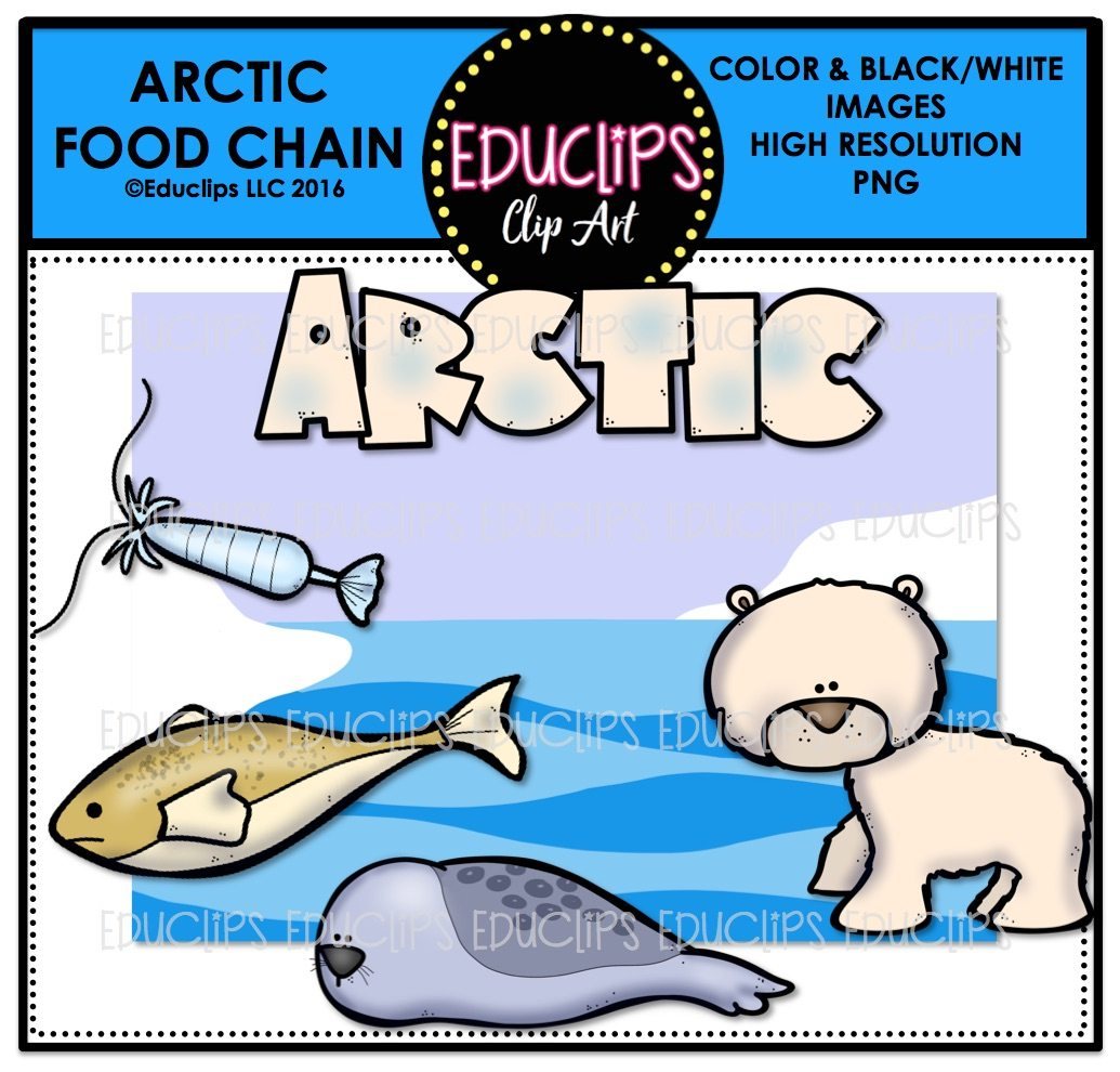 arctic food chain clip art mini bundle color and b w welcome to rh edu clips com food chain clip art