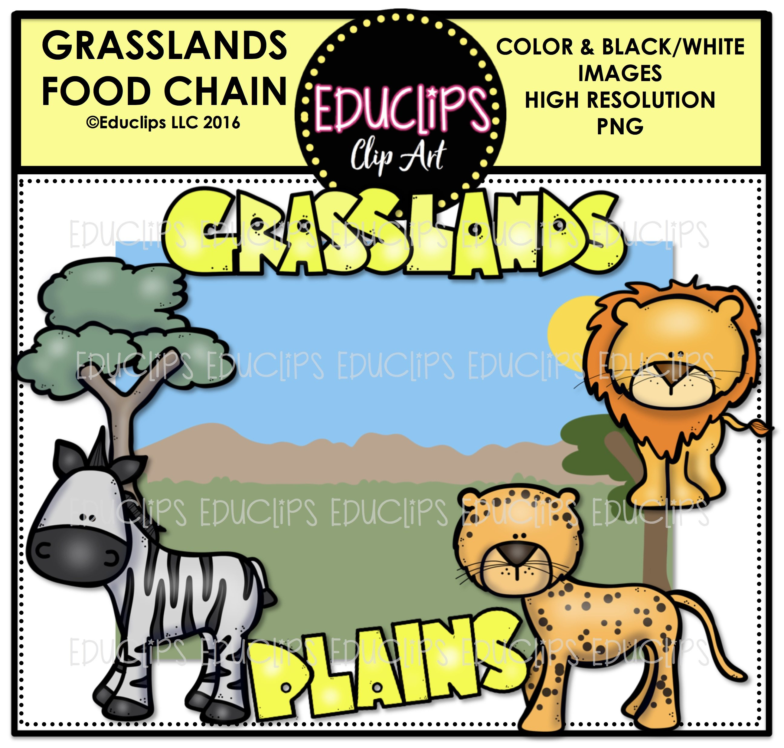 grasslands food chain clip art mini bundle color and b w welcome rh edu clips com grassland climate diagram grassland climate zone