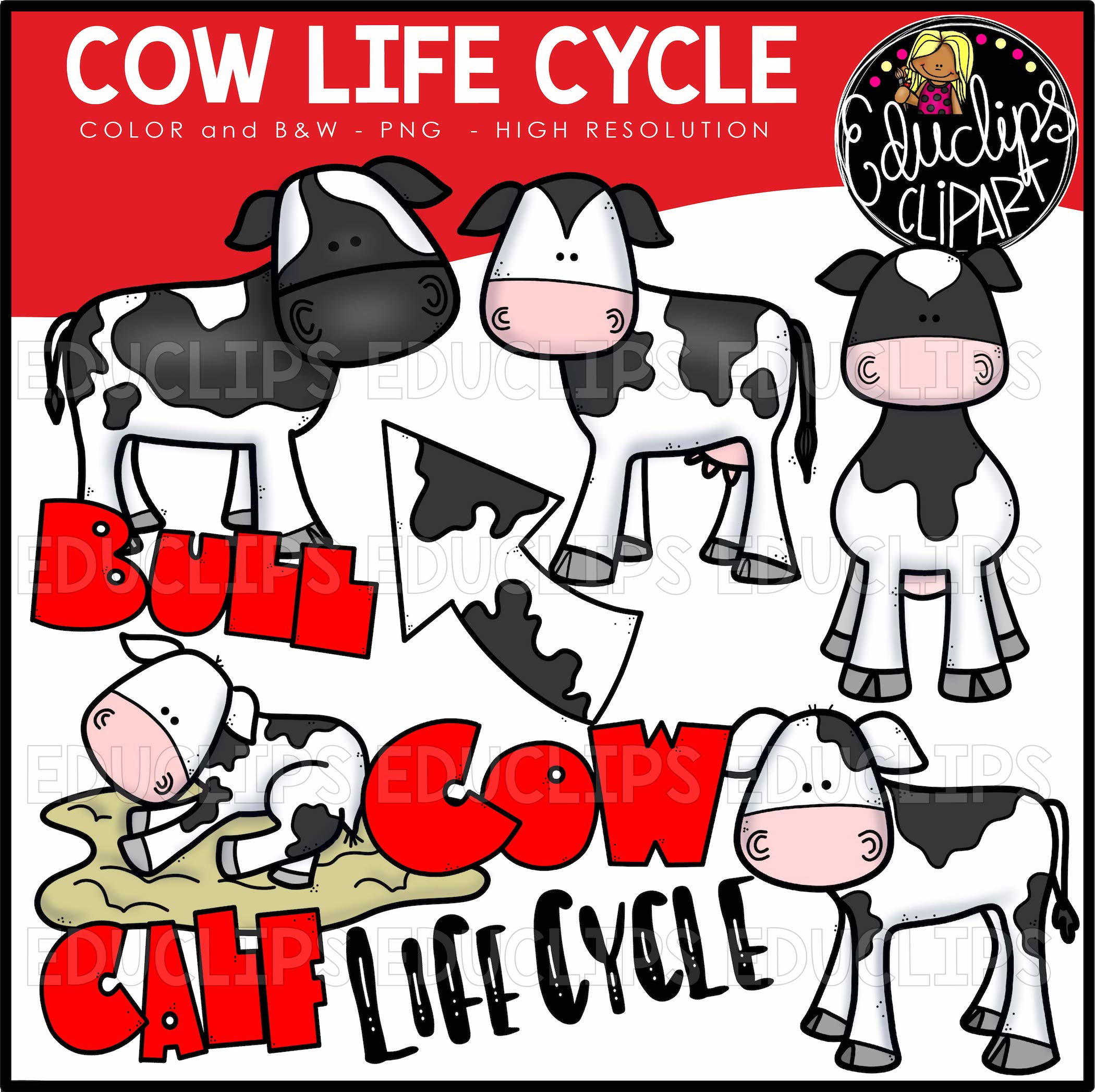 Cow Life Cycle Clip Art Bundle (Color and B&W) - Welcome to Educlips ...